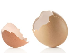 [Image - cracked egg]