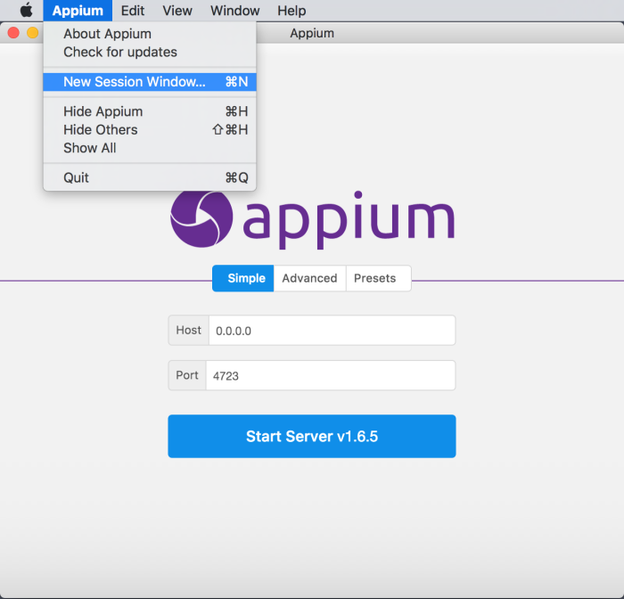 New Appium Session.png